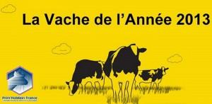 La vache de l'année 2013