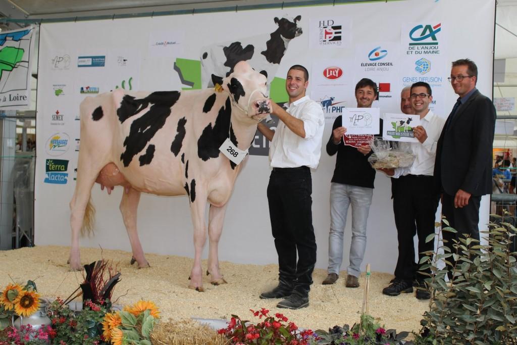 LV Hanovre (Podium) (Régional Pays de la Loire 2015)